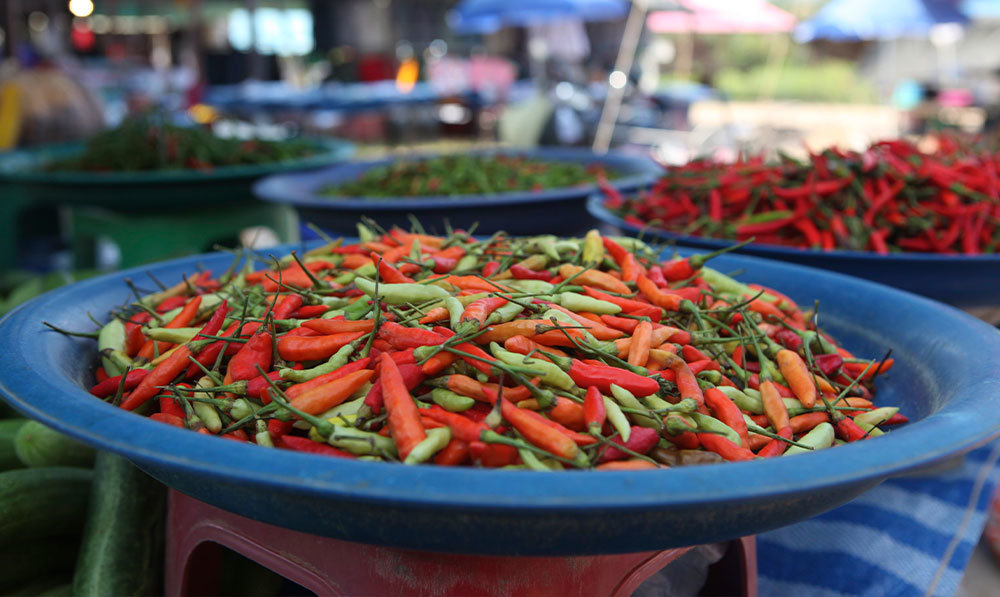 Chef-Kent-Rathbun-World-Culinary-Tours-Thailand-17